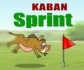скачать flash игру kaban: sprint